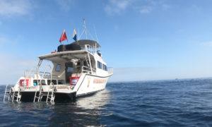 Waterhorse-Charters-Humboldt-Newton-46