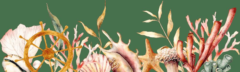 banner-book-dive-sites-san-diego