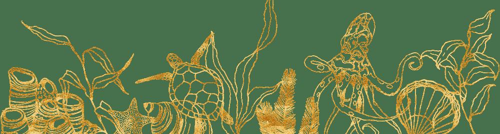 banner-dive-sites-san-diego