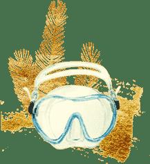 crew-waterhorse-scuba-diving-san-diego