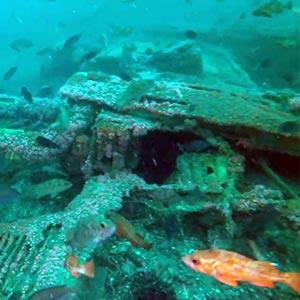 p28-scuba-diving-san-diego-waterhorse-charters
