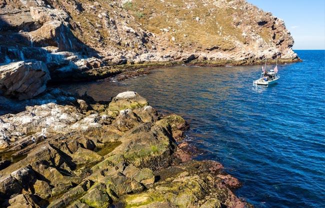 san-diego-party-cruises-coronado-island