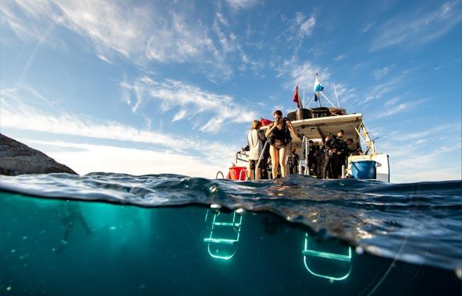 scuba-diving-charter-san-diego