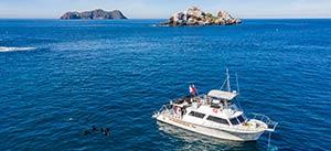 scuba-diving-san-diego