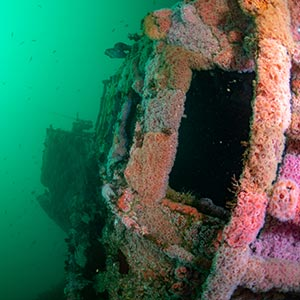 uss-hogan-scuba-diving-san-diego
